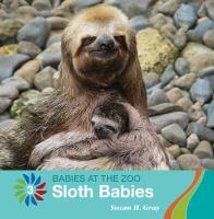 Sloth Babies