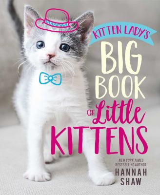 Kitten Lady's Big Book of Little Kittens(book-cover)
