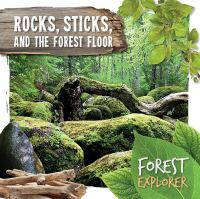 Rocks, Sticks, and the Forest Floor