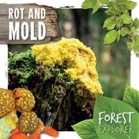 Rot and Mold