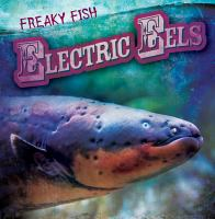 Electric Eels