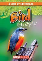 Bird Life Cycles