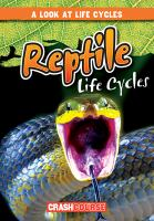 Reptile Life Cycles