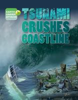 Tsunamis Crushes Coastline