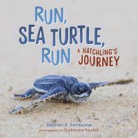 Run, Sea Turtle, Run