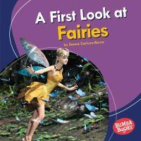 A First Look at Fairies