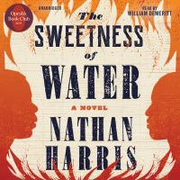 The Sweetness of Water (CD)
