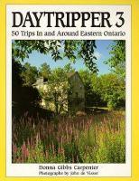 Daytripper 3