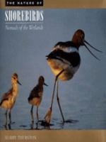 The Nature of Shorebirds