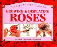 A Step-by-step Guide to Growing & Displaying Roses