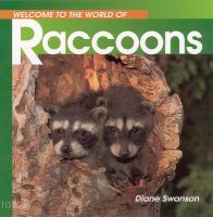 Welcome to the World of Raccoons
