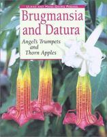 Brugmansia and Datura