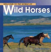 Welcome to the World of Wild Horses