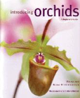 Introducing Orchids