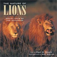 The Nature of Lions