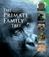 The Primate Family Tree