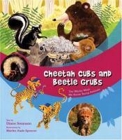 Cheetah Cubs and Beetle Grubs