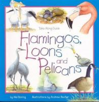 Flamingos, Loons and Pelicans