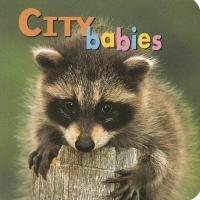 City Babies