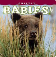 Grizzly Babies