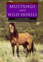 Mustangs and Wild Horses