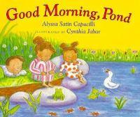 Good Morning, Pond