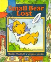 Small Bear Lost
