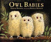 Owl Babies