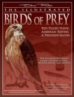 The Illustrated Birds of Prey