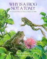 Why Is A Frog Not A Toad?