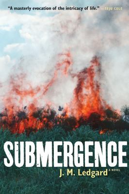 Submergence book jacket