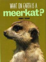 What on Earth Is A Meerkat?