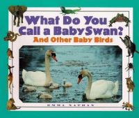 What Do You Call A Baby Swan?