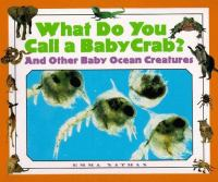What Do You Call A Baby Crab?