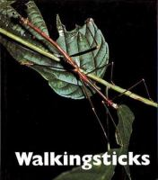 Walkingsticks