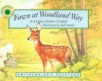 Fawn at Woodland Way