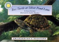 Box Turtle At Silver Pond Lane
