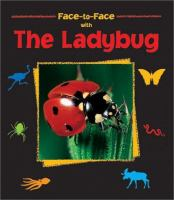 Face-to-face With the Ladybug