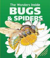 The Wonders Inside Bugs & Spiders