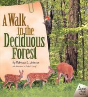 A Walk in the Deciduous Forest
