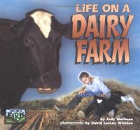 Life on A Dairy Farm