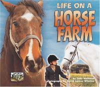 Life on A Horse Farm