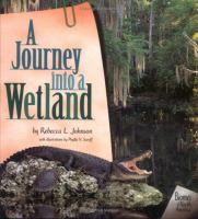 A Journey Into A Wetland