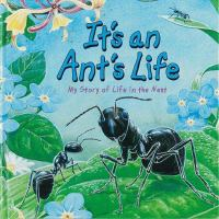 It's and Ant's Life