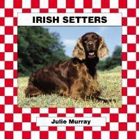 Irish Setters