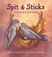 Spit and Sticks