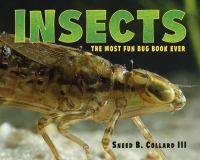 Sneed B. Collard III's Most Fun Book Ever About Insects