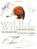Wildlife Painting Basics