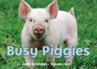Busy Piggies