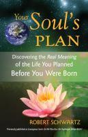 Your Soul's Plan